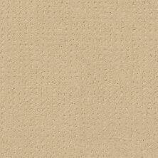 Shaw Floors Shaw Design Center Luxury Bay Pattern French Linen 00103_5C694