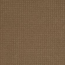 Shaw Floors Shaw Design Center Luxury Bay Pattern Bonsai 00324_5C694