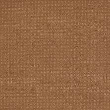 Shaw Floors Shaw Design Center Luxury Bay Pattern English Toffee 00703_5C694