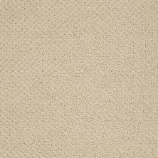 Shaw Floors Shaw Design Center Proven Identity Loop Parchment 00125_5C695