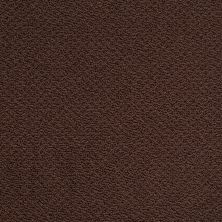 Shaw Floors Shaw Design Center Proven Identity Loop Apple Butter 00728_5C695