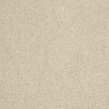 Shaw Floors Shaw Design Center Best Basics Linen 00101_5C728