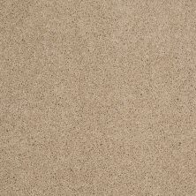 Shaw Floors Shaw Design Center Best Basics Dunes 00102_5C728