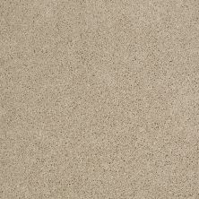 Shaw Floors Shaw Design Center Best Basics Frost 00104_5C728