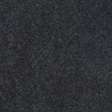 Shaw Floors Shaw Design Center Best Basics Indigo 00411_5C728
