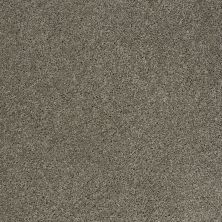Shaw Floors Shaw Design Center Best Basics Pewter 00513_5C728