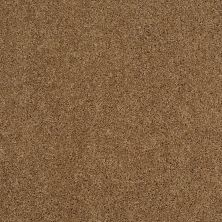 Shaw Floors Shaw Design Center Best Basics Leather Bound 00702_5C728