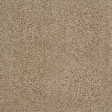 Shaw Floors Shaw Design Center Best Basics Mushroom 00703_5C728