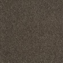 Shaw Floors Shaw Design Center Best Basics Graphite 00712_5C728