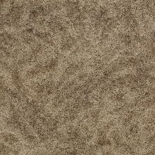 Shaw Floors Shaw Design Center Starting Point Bronze Glow 00200_5C731