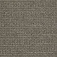 Shaw Floors Shaw Design Center Propel Pewter 00513_5C733