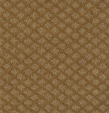 Shaw Floors Shaw Design Center New Venture Leather Bound 00702_5C734
