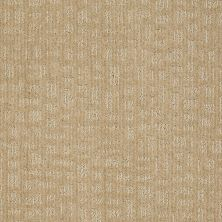 Shaw Floors Shaw Design Center Get Going Field Stone 00105_5C737