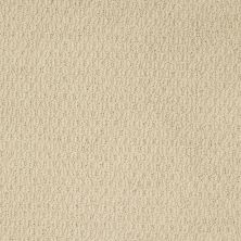 Shaw Floors Shaw Design Center Hot Line Linen 00101_5C738