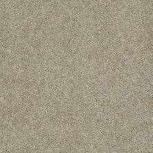 Shaw Floors Shaw Design Center Beautifully Simple I 12 Honeycomb 00200_5C746