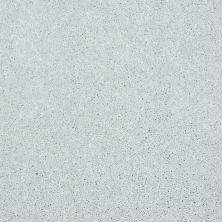 Shaw Floors Shaw Design Center Beautifully Simple I 15′ Sheer Silver 00500_5C751