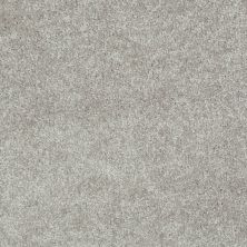 Shaw Floors Shaw Design Center Beautifully Simple I 15′ Mocha Frost 00702_5C751