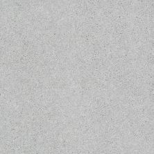Shaw Floors Shaw Design Center Beautifully Simple II 15′ Sheer Silver 00500_5C752