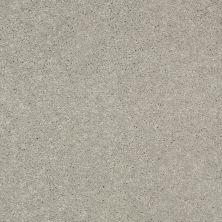 Shaw Floors Shaw Design Center Beautifully Simple II 15′ Dove Tail 00501_5C752