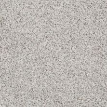 Shaw Floors Shaw Design Center Style Standard II Snowcap 00179_5C772