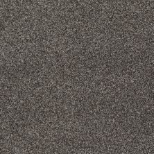 Shaw Floors Shaw Design Center Designer Touch Grey Flannel 00501_5C774