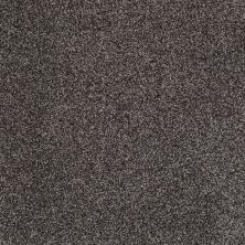 Shaw Floors Shaw Design Center Designer Touch Vintage Leather 00755_5C774