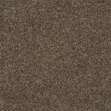 Shaw Floors Shaw Design Center Designer Touch Weathered Wood 00759_5C774