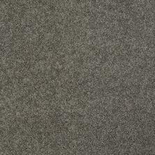 Shaw Floors Shaw Design Center My Destination II Grey Flannel 00501_5C776