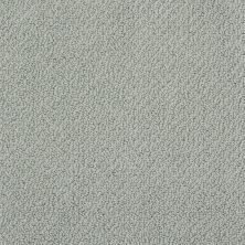 Shaw Floors Shaw Design Center True Reflections Loop Silver Sage 00350_5C782