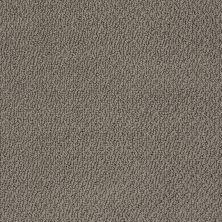 Shaw Floors Shaw Design Center True Reflections Loop Graphite 00754_5C782