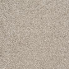 Shaw Floors Shaw Design Center Free Time Abalone 00153_5C787