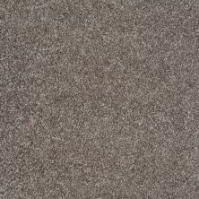 Shaw Floors Shaw Design Center Free Time Stone 00751_5C787