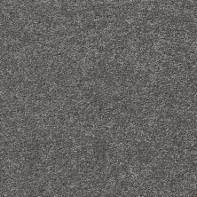 Shaw Floors Shaw Design Center Honest To Goodness Slate 00701_5C793