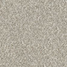 Shaw Floors Value Collections Cabana Bay (b) Net Seashell 00151_5E001