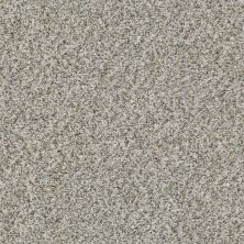 Shaw Floors Value Collections Cabana Bay (b) Net Stone 00550_5E001