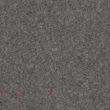 Shaw Floors Value Collections Cabana Life Solid Net Tree Bark 00523_5E003