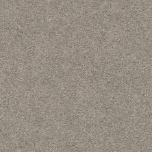 Shaw Floors Simply The Best Cabana Life Solid Net Perfect Taupe 00715_5E003