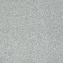 Shaw Floors Take The Floor Texture I Pewter 00551_5E005