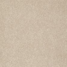 Shaw Floors Take The Floor Texture II Hickory 00711_5E006