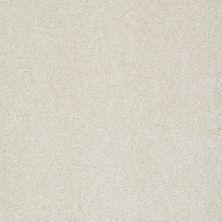 Shaw Floors Foundations Take The Floor Texture Blue Alpaca 00140_5E007