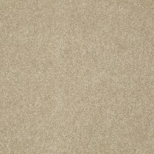 Shaw Floors Foundations Take The Floor Texture Blue Hazelnut 00750_5E007