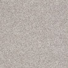 Shaw Floors Foundations Take The Floor Tonal I Silver Charm 00501_5E008