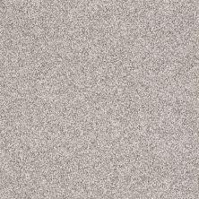 Shaw Floors Take The Floor Tonal I Silver Charm 00501_5E008