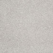 Shaw Floors Take The Floor Tonal II Classique 00161_5E009