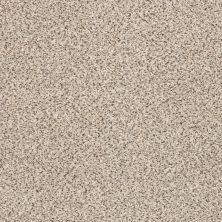 Shaw Floors Take The Floor Accent II Luna 00174_5E012