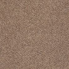 Shaw Floors Foundations Take The Floor Accent II Baltic Brown 00770_5E012