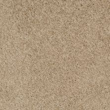 Shaw Floors Foundations Take The Floor Twist Blue Hazelnut 00750_5E016