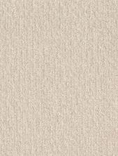 Shaw Floors Bellera Emergence Net Snow Fall 00101_5E017