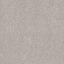 Shaw Floors Bellera Emergence Net Dew 00106_5E017