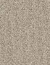 Shaw Floors Bellera Emergence Net Gold Rush 00200_5E017